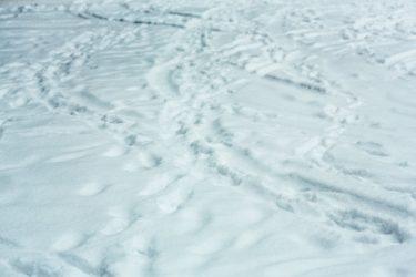 【豪雪体験談】平成23年豪雪(山陰豪雪)を経験して学んだこと